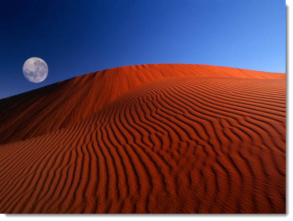 стандартные картинки Windows Xp - фото 7