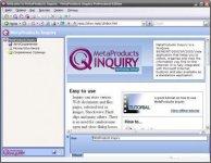MetaProducts Inquiry Professional Edition. Программа для сохранения и…