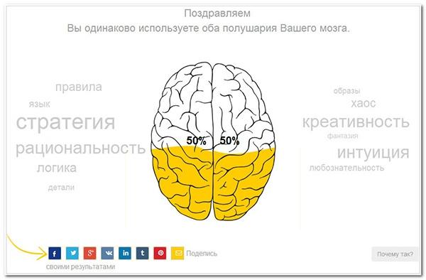 Какое из полушарий Вашего мозга доминирует больше?