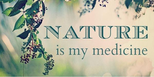Как сделать звуки природы частью вашего дня