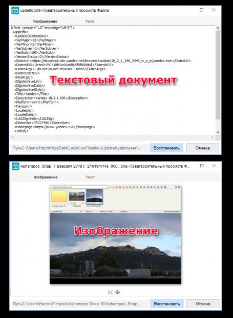 Предпросмотр текста и изображений в EASEUS Data Recovery Wizard