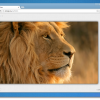 Dropi – хостинг изображений без рекламы и регистрации